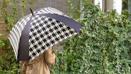 Квадратний парасольку