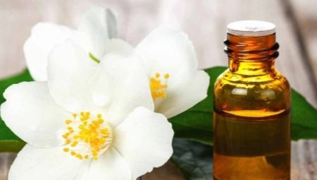 Ефірне масло жасмину – властивості і поради по застосуванню