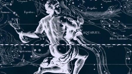 Чоловік Водолій-Півень: опис особистості та особливості взаємодії