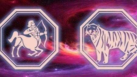 Характеристика чоловіка Стрільця, народженої в рік Тигра