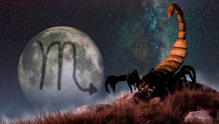 Сумісність Скорпіона зі Скорпіоном у різних сферах життя