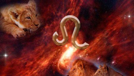 Характеристика жінки Лева, народженої в рік Кабана