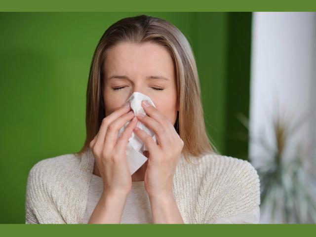 Хронічний нежить, закладеність носа у дорослого і дитини: причини, види, симптоми. Як вилікувати хронічний нежить медикаментами і народними засобами в домашніх умовах?